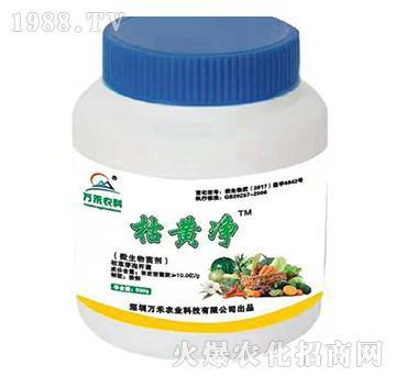 微生物菌劑-枯黃凈-萬禾農科