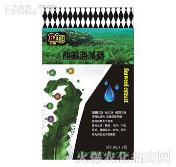 酶解海藻精-力格