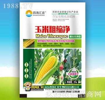 玉米粗缩净-含氨基酸水