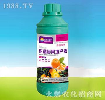 柑橘膨果增产素-四海汇