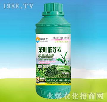 茶叶催芽素-四海汇农
