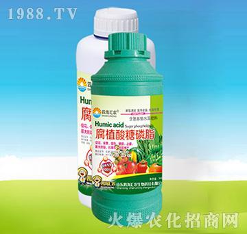 腐植酸糖磷酯-四海汇农