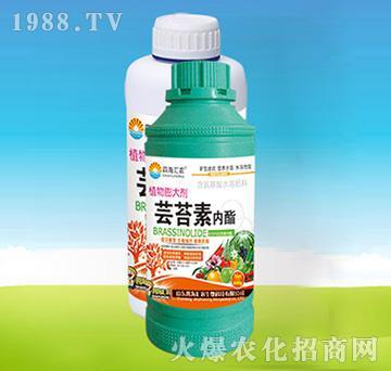 芸苔素内酯-四海汇农
