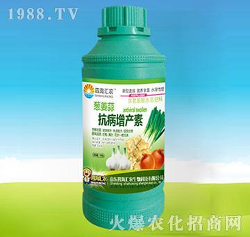 葱姜蒜抗病增产素-四海
