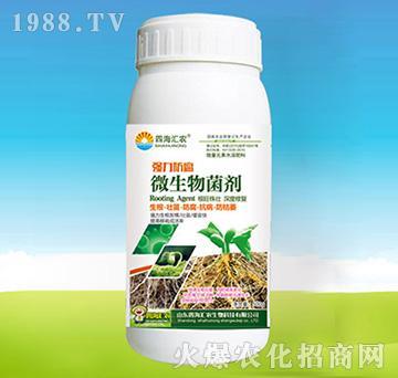 强力防腐微生物菌剂-四