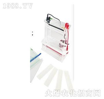 垂直电泳槽DYC-SC