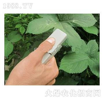 植物叶片温差测量仪W-
