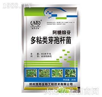 阿糖腺苷多粘类芽孢杆菌-澳邦生物