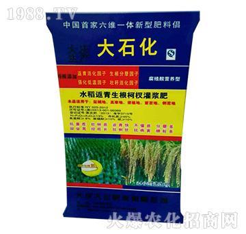 水稻返青生根柯杈灌浆肥
