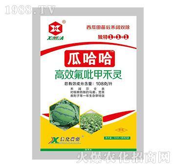 高效氟吡甲禾灵(西瓜地除草剂)-瓜哈哈-富邦作物