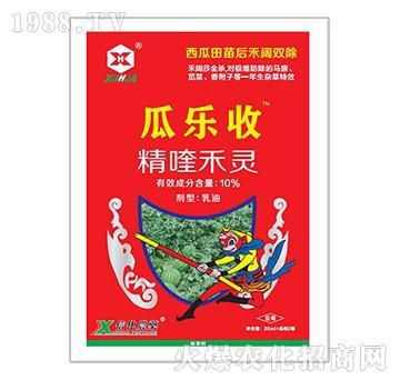 10%精喹禾灵(西瓜地除草剂)-瓜乐收-富邦作物