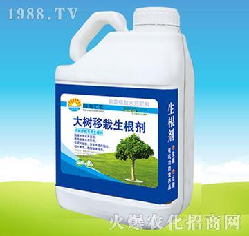 大树移栽生根剂-四海汇农