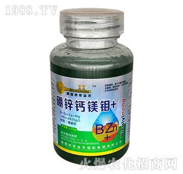 硼锌钙镁钼-碧翠益农