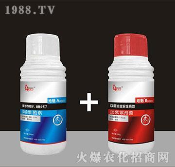 阿维菌素+淡紫拟青霉-地魅-荣鑫