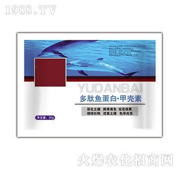 多肽鱼蛋白・甲壳素(袋