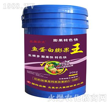 鱼蛋白膨果王-北美农大