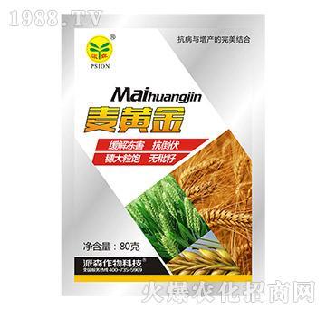 麦黄金-派森农化