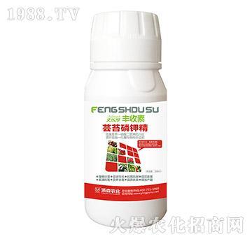 芸苔磷钾精-派森农化