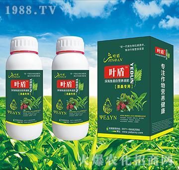 茶桑专用深海蛋白营养液肥-叶盾