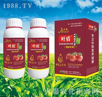 番茄专用深海蛋白营养液肥-叶盾