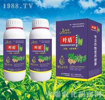 花生大豆专用深海蛋白营养液肥-叶盾