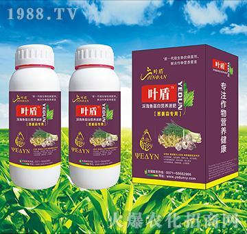 葱姜蒜专用深海蛋白营养液肥-叶盾