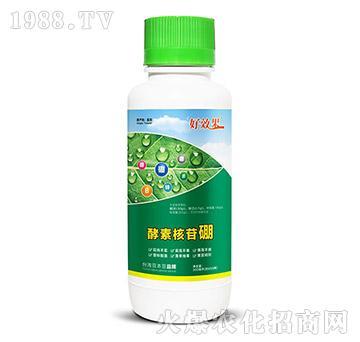 酵素核苷硼-好效果-豆本豆