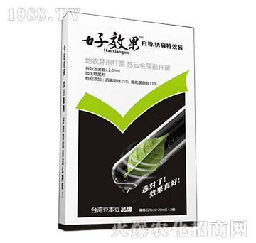 白粉锈病特效组合-好效果-豆本豆