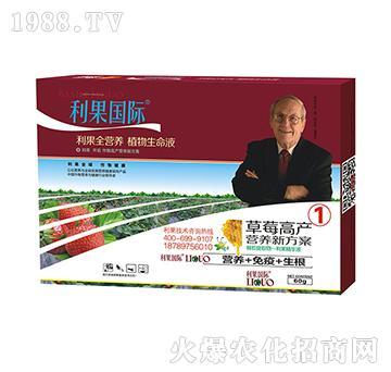 草莓高产营养套餐1-利果国际