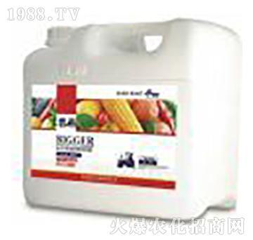 广谱通用高分子复合肽有机蛋白液肥(桶装)-碧格-瀚森农业