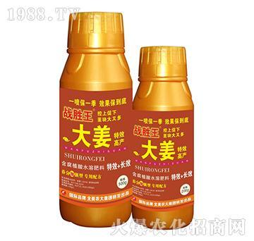 大姜特效高产含腐植酸水