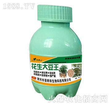 花生大豆王(瓶)-喜耕田