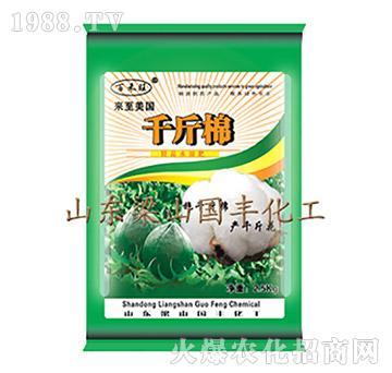 千斤棉-梁山国丰