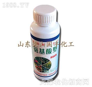 氨基酸型-梁山国丰
