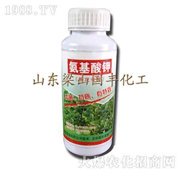 氨基酸钾-梁山国丰