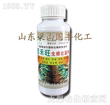 生根壮苗剂-百禾旺-梁
