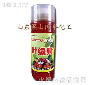 叶绿素(瓶)-梁山国丰