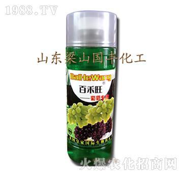 葡萄专用叶面肥-梁山国