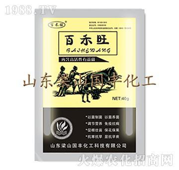 百禾旺(袋)-梁山国丰