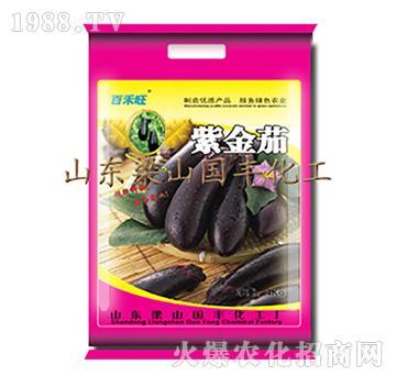 紫金茄-梁山国丰