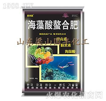 海藻酸螯合肥-梁山国丰