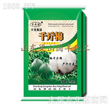 千斤棉(25kg)-梁
