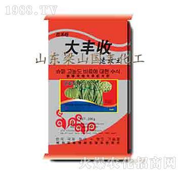 豆类专用-大丰收-梁山