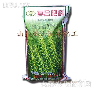 小麦BB复合肥料-梁山国丰