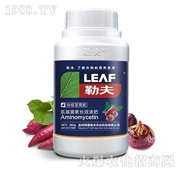 块根茎需配氨基菌素长效液肥(瓶)-勒夫