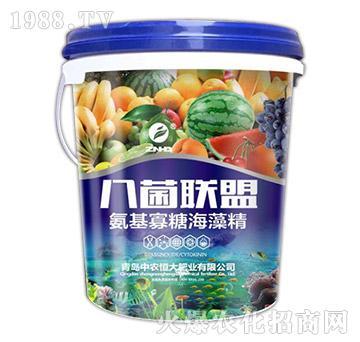 氨基寡糖海藻精-八菌联盟-中农恒大
