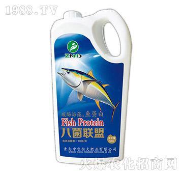 碳酶海藻・鱼蛋白-八菌联盟-中农恒大
