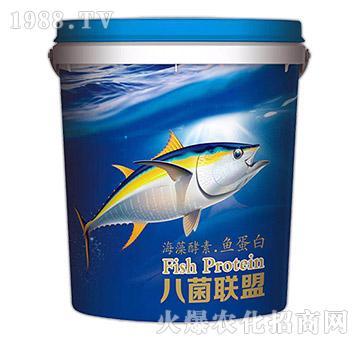 海藻酵素・鱼蛋白-八菌联盟-中农恒大
