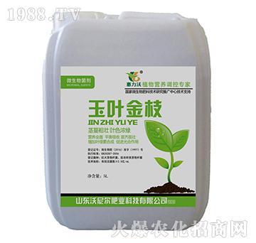 碳酶蛋白菌剂-玉叶金枝-沃尼尔