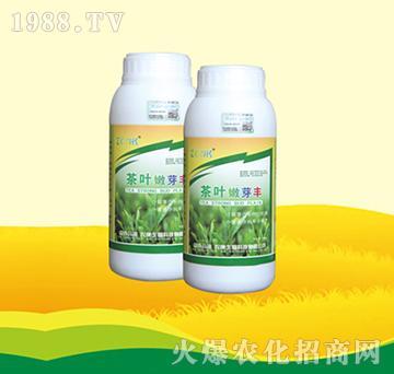 茶叶嫩芽丰(瓶装)-农康